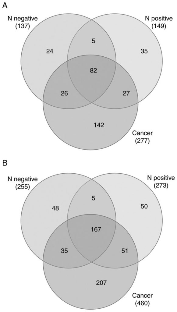 Identification of potential cervical cancer serum biomarkers in Thai patients.